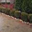 Harrison-Township-brick-pavers